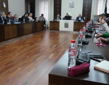 """El pleno aprueba la cesión de terrenos a la Junta  para la """"Mejora y acondicionamiento del Camino de la Pontezuela"""""""