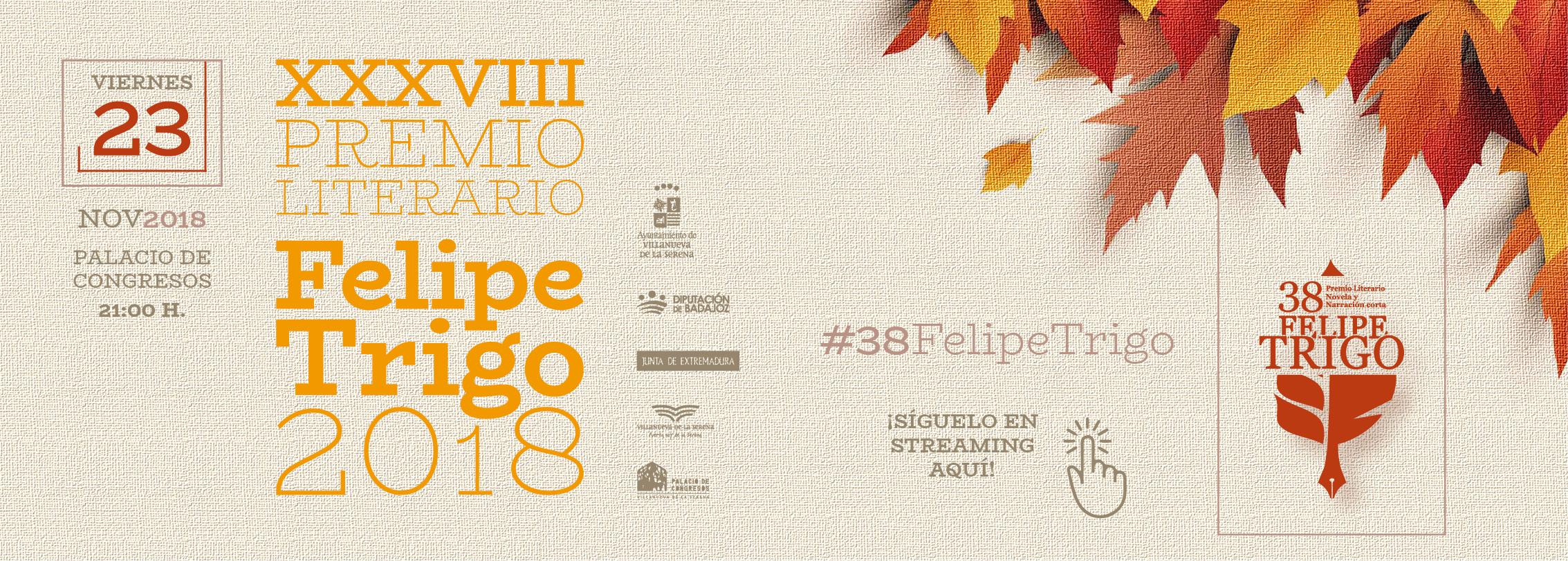 FELIPE TRIGO 2018 WEB 40aa9