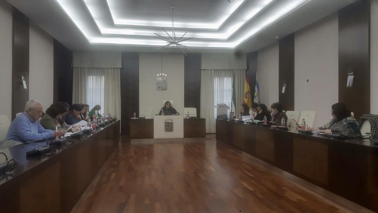 El Consejo Municipal de Igualdad se reúne y aborda las actuaciones en materia de igualdad