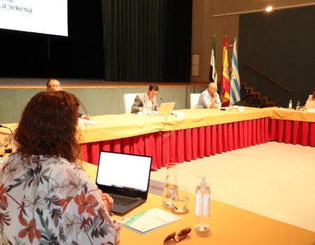 El Pleno aprueba modificaciones de más de 1,1 millones de euros para el plan de ayuda a familias, pymes, empresas y emprendedores