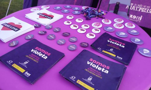 El Punto Violeta informa sobre la Violencia de Género